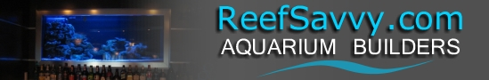 Reef Savvy Logo