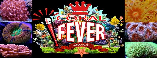 logo_coralfever.jpg