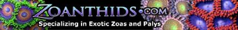 logo_zoanthids.jpg
